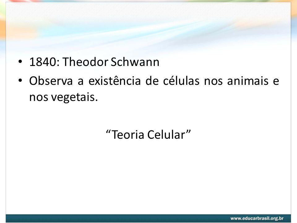 1840: Theodor Schwann Observa a existência de células nos animais e nos vegetais. Teoria Celular