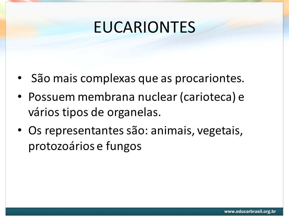 EUCARIONTES São mais complexas que as procariontes. Possuem membrana nuclear (carioteca) e vários tipos de organelas. Os representantes são: animais,