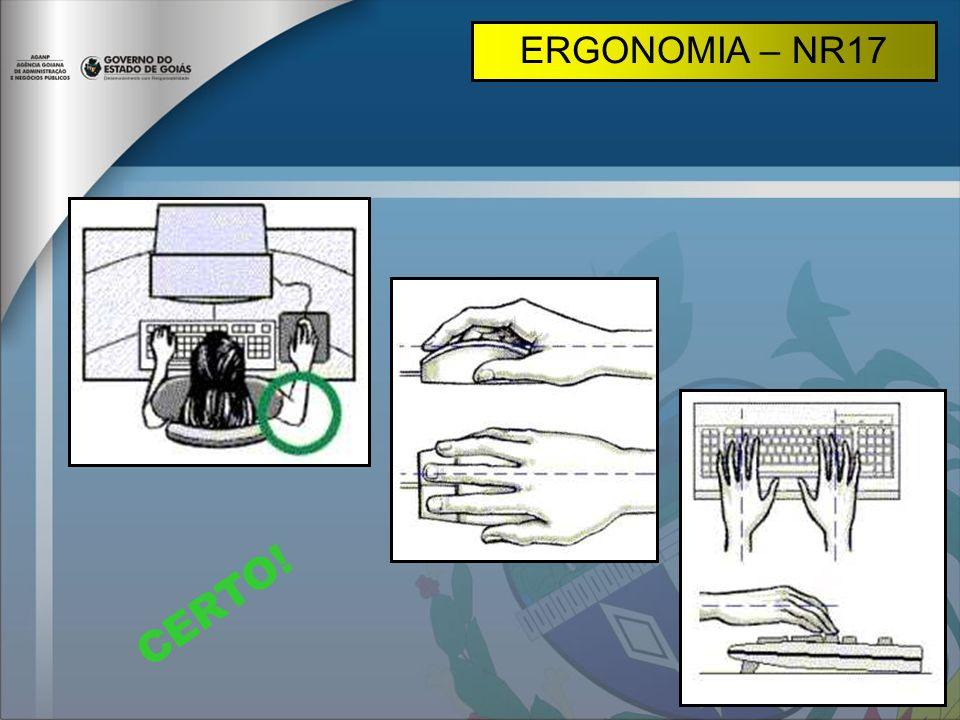 CERTO! ERGONOMIA – NR17