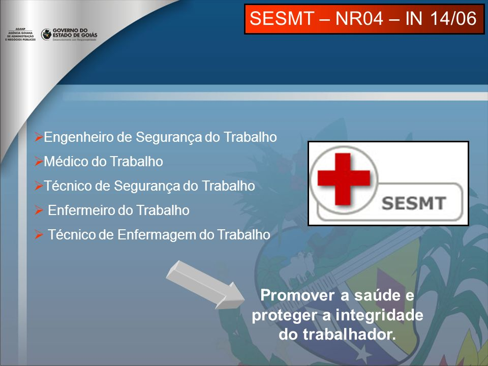 Engenheiro de Segurança do Trabalho Médico do Trabalho Técnico de Segurança do Trabalho Enfermeiro do Trabalho Técnico de Enfermagem do Trabalho Promover a saúde e proteger a integridade do trabalhador.