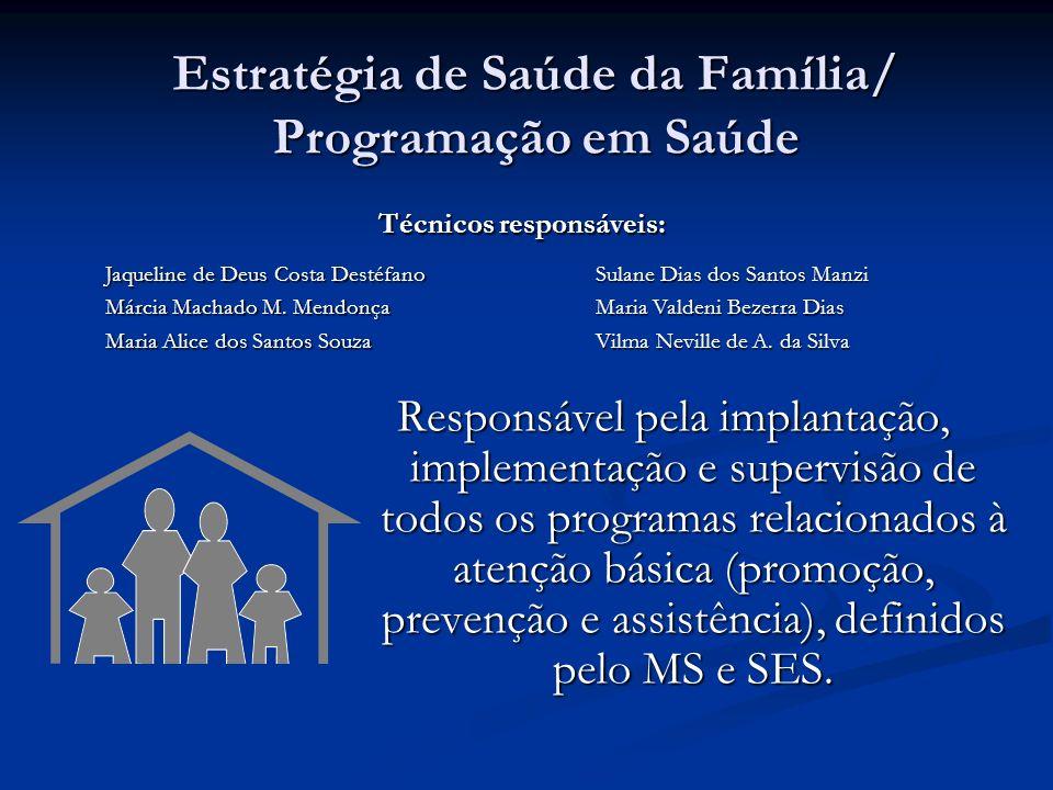 Estratégia de Saúde da Família/ Programação em Saúde Responsável pela implantação, implementação e supervisão de todos os programas relacionados à atenção básica (promoção, prevenção e assistência), definidos pelo MS e SES.