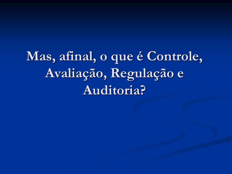 Mas, afinal, o que é Controle, Avaliação, Regulação e Auditoria?