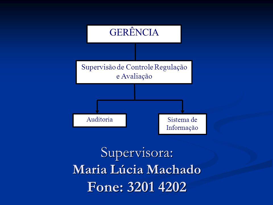 Supervisora: Maria Lúcia Machado Fone: 3201 4202 GERÊNCIA Supervisão de Controle Regulação e Avaliação Sistema de Informação Auditoria