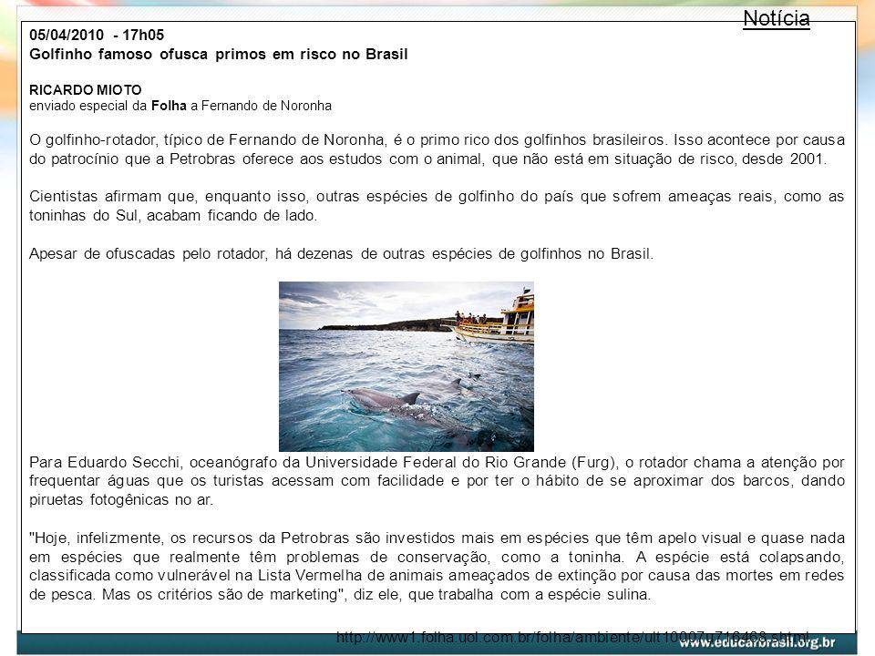05/04/2010 - 17h05 Golfinho famoso ofusca primos em risco no Brasil RICARDO MIOTO enviado especial da Folha a Fernando de Noronha O golfinho-rotador,