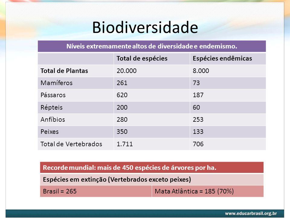 Biodiversidade Níveis extremamente altos de diversidade e endemismo. Total de espéciesEspécies endêmicas Total de Plantas20.0008.000 Mamíferos26173 Pá