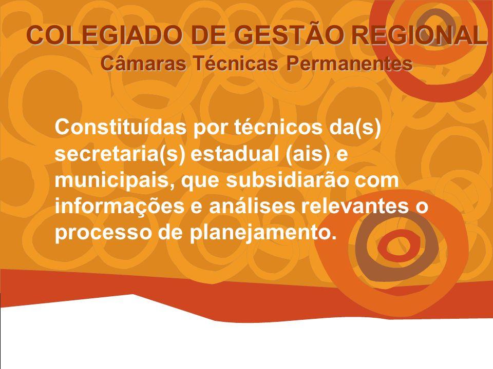 COLEGIADO DE GESTÃO REGIONAL Câmaras Técnicas Permanentes Constituídas por técnicos da(s) secretaria(s) estadual (ais) e municipais, que subsidiarão com informações e análises relevantes o processo de planejamento.