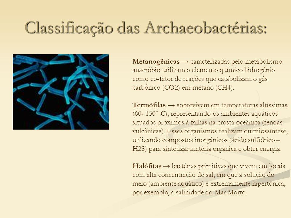Classificação das Archaeobactérias: Metanogênicas caracterizadas pelo metabolismo anaeróbio utilizam o elemento químico hidrogênio como co-fator de re