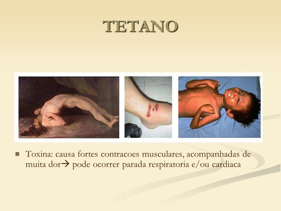 TETANO Toxina: causa fortes contracoes musculares, acompanhadas de muita dor pode ocorrer parada respiratoria e/ou cardiaca