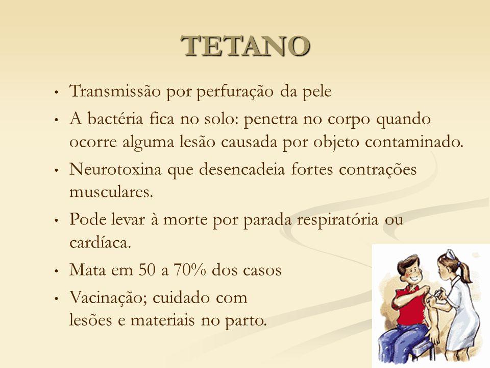 Transmissão por perfuração da pele A bactéria fica no solo: penetra no corpo quando ocorre alguma lesão causada por objeto contaminado. Neurotoxina qu