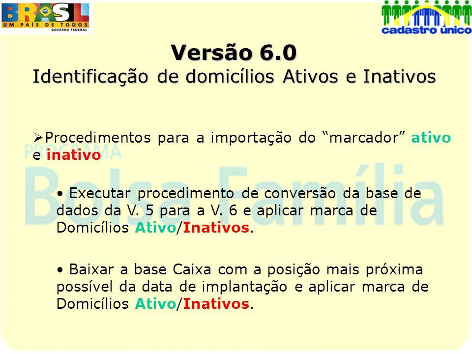 Versão 6.0 Identificação de domicílios Ativos e Inativos Procedimentos para a importação do marcador ativo e inativo Executar procedimento de conversã