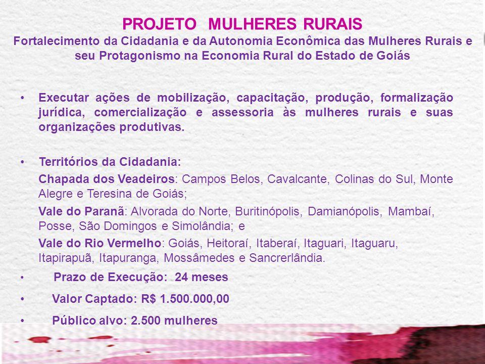 O QUE É A SUPEM? Superintendência de Políticas para as Mulheres, regulamentada pelo Decreto 7.387 de 28/06/2011. EQUIPE SUPEM: SUPERINTENDENTE: Eliana