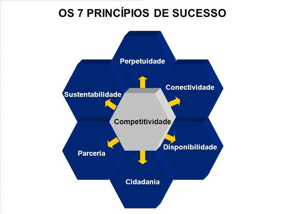 Parceria Perpetuidade Conectividade Parceria Cidadania Sustentabilidade Competitividade OS 7 PRINCÍPIOS DE SUCESSO Disponibilidade