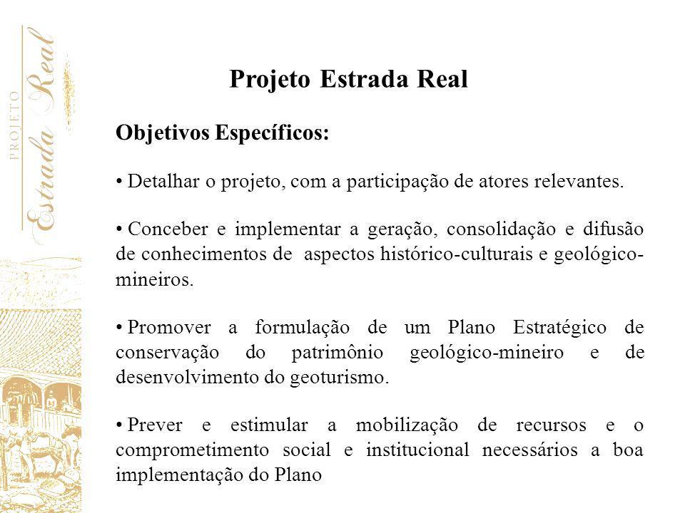 Objetivos Específicos: Detalhar o projeto, com a participação de atores relevantes. Conceber e implementar a geração, consolidação e difusão de conhec