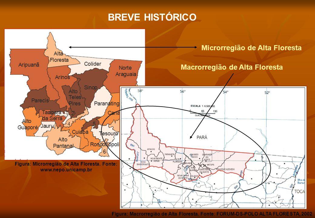 Macrorregião de Alta Floresta BREVE HISTÓRICO Microrregião de Alta Floresta Figura: Microrregião de Alta Floresta. Fonte: www.nepo.unicamp.br Figura: