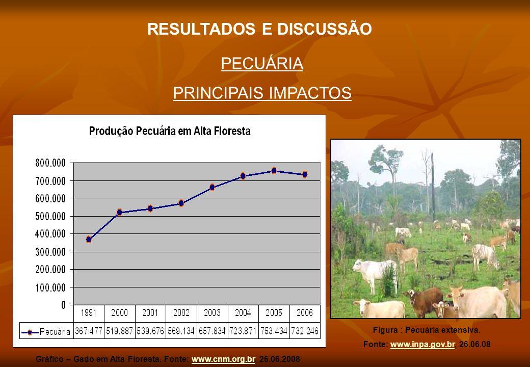 PECUÁRIA PRINCIPAIS IMPACTOS Figura : Pecuária extensiva. Fonte: www.inpa.gov.br, 26.06.08www.inpa.gov.br RESULTADOS E DISCUSSÃO Gráfico – Gado em Alt