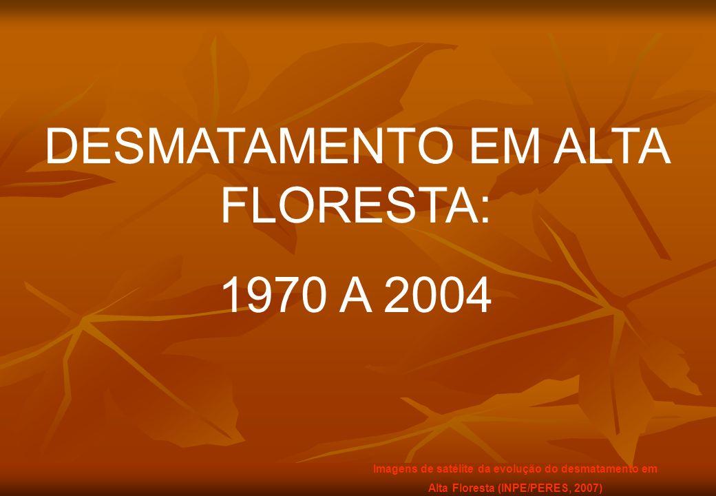 DESMATAMENTO EM ALTA FLORESTA: 1970 A 2004 Imagens de satélite da evolução do desmatamento em Alta Floresta (INPE/PERES, 2007)