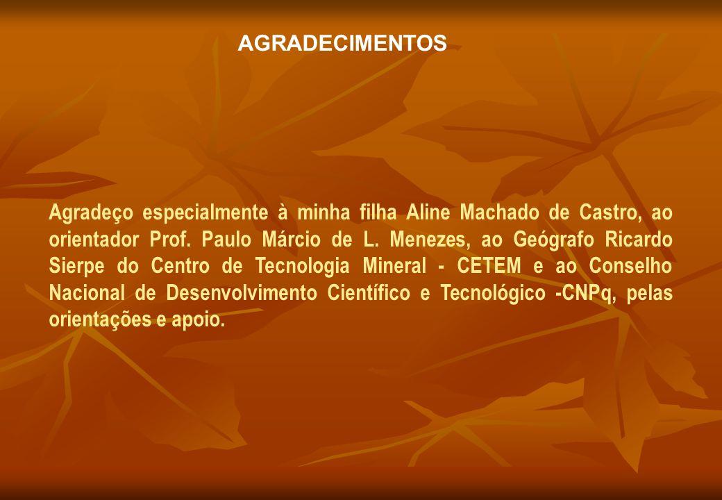AGRADECIMENTOS Agradeço especialmente à minha filha Aline Machado de Castro, ao orientador Prof. Paulo Márcio de L. Menezes, ao Geógrafo Ricardo Sierp