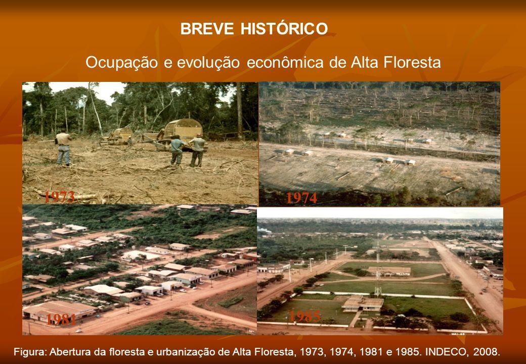 BREVE HISTÓRICO Ocupação e evolução econômica de Alta Floresta 1973 1974 1981 1985 Figura: Abertura da floresta e urbanização de Alta Floresta, 1973,