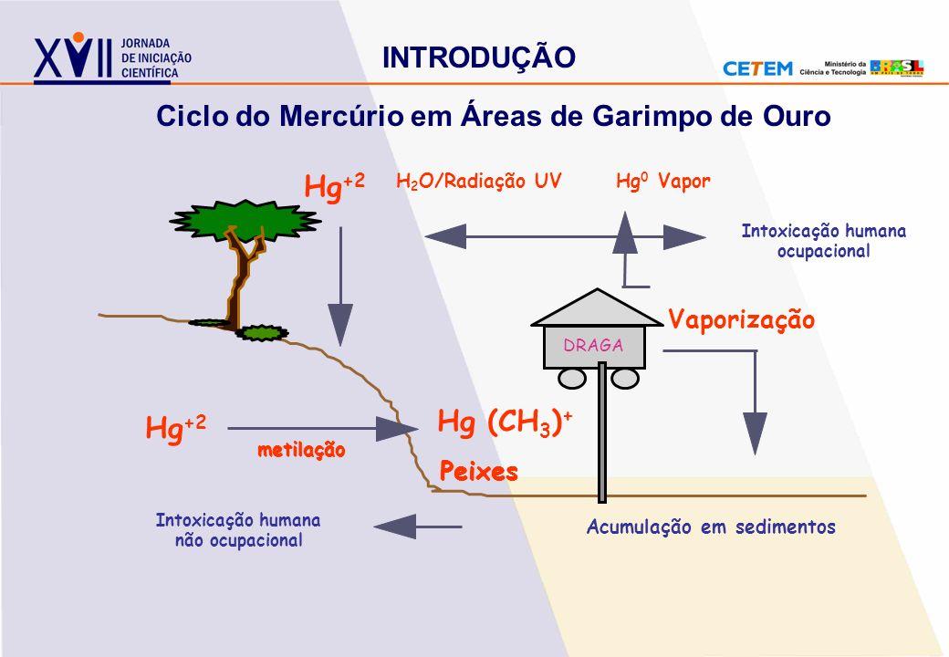 Acumulação em sedimentos Vaporização Peixes Intoxicação humana não ocupacional metilação H 2 O/Radiação UVHg 0 Vapor Intoxicação humana ocupacional Hg