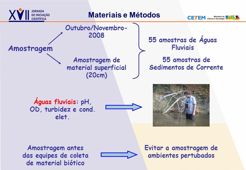Amostragem Outubro/Novembro- 2008 Amostragem de material superficial (20cm) 55 amostras de Sedimentos de Corrente 55 amostras de Águas Fluviais Amostr