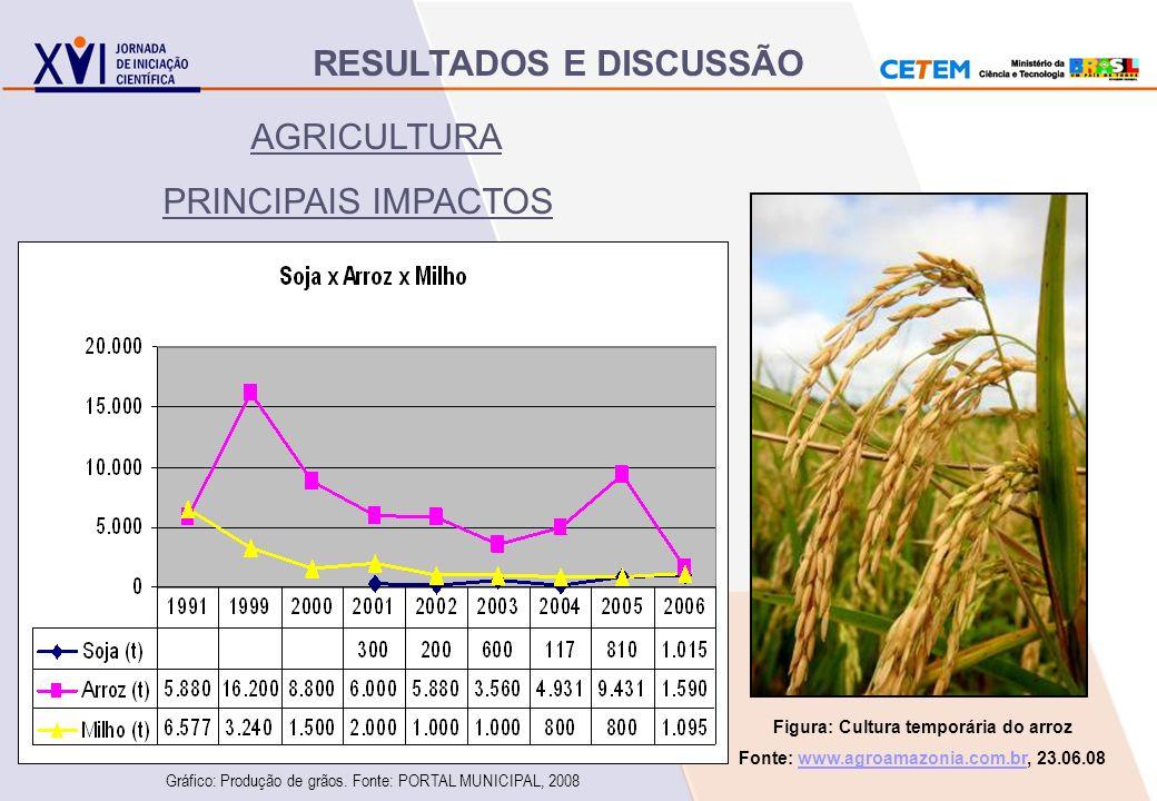 AGRICULTURA PRINCIPAIS IMPACTOS Figura: Cultura temporária do arroz Fonte: www.agroamazonia.com.br, 23.06.08www.agroamazonia.com.br Gráfico: Produção