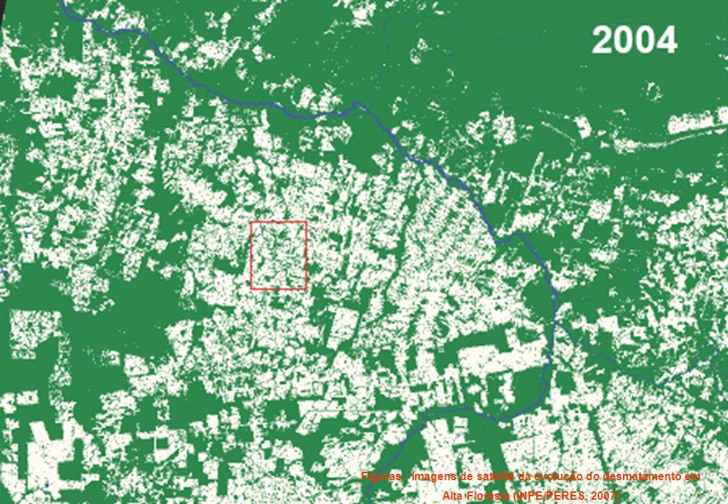 DESMATAMENTO EM ALTA FLORESTA: 1970 A 2004 Figuras : Imagens de satélite da evolução do desmatamento em Alta Floresta (INPE/PERES, 2007)