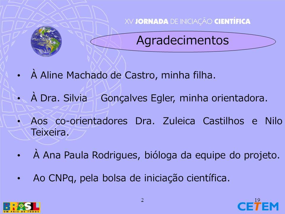 219 Agradecimentos À Aline Machado de Castro, minha filha.