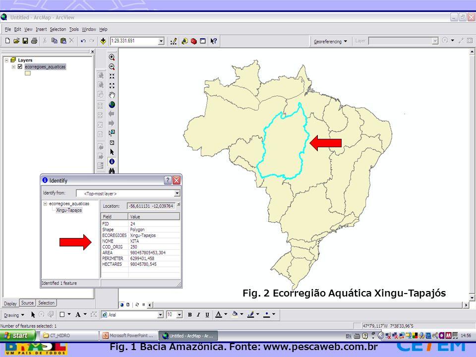 25 Caracterização da área A ecorregião aquática Xingu-Tapajós Está localizada no interflúvio dos rios Xingu e Tapajós, afluentes pela margem direita do rio Amazonas; É uma área de transição entre o cerrado e a floresta amazônica; Área onde se desencadeiam conflitos pela posse da terra, especialmente na fronteira do norte do Mato Grosso, conhecida como Terra do Meio.
