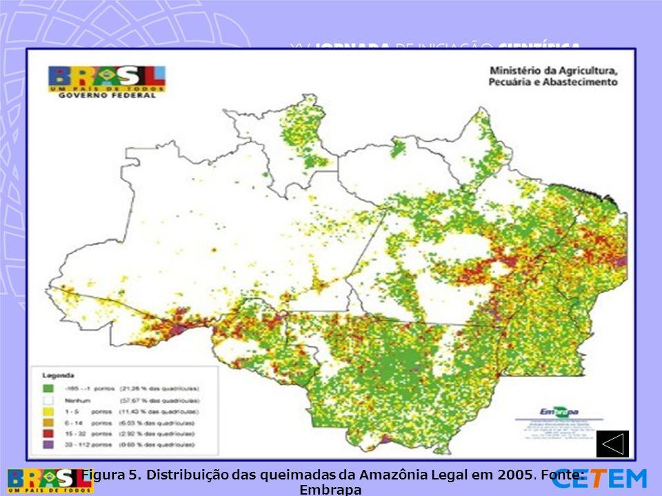 Figura 5. Distribuição das queimadas da Amazônia Legal em 2005. Fonte: Embrapa