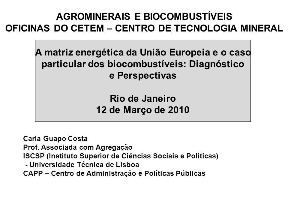 A matriz energética da União Europeia e o caso particular dos biocombustíveis: Diagnóstico e Perspectivas Rio de Janeiro 12 de Março de 2010 Carla Gua