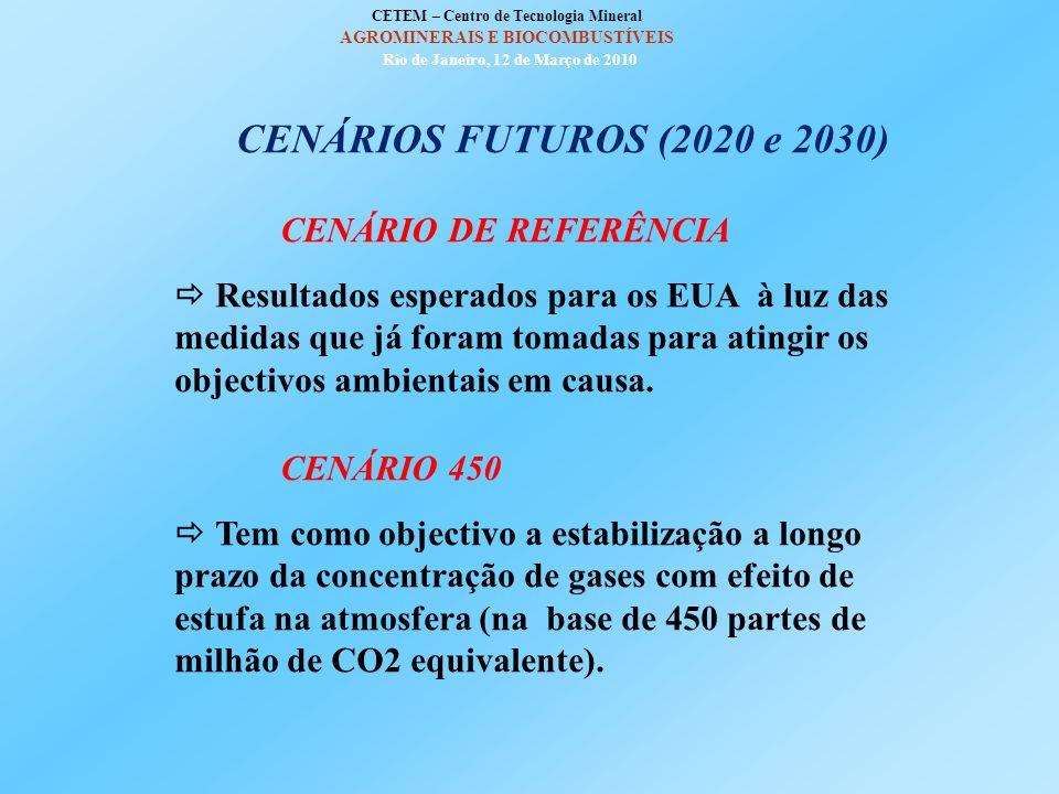 CETEM – Centro de Tecnologia Mineral AGROMINERAIS E BIOCOMBUSTÍVEIS Rio de Janeiro, 12 de Março de 2010 PRODUÇÃO MUNDIAL DE BIOCOMBUSTÍVEIS