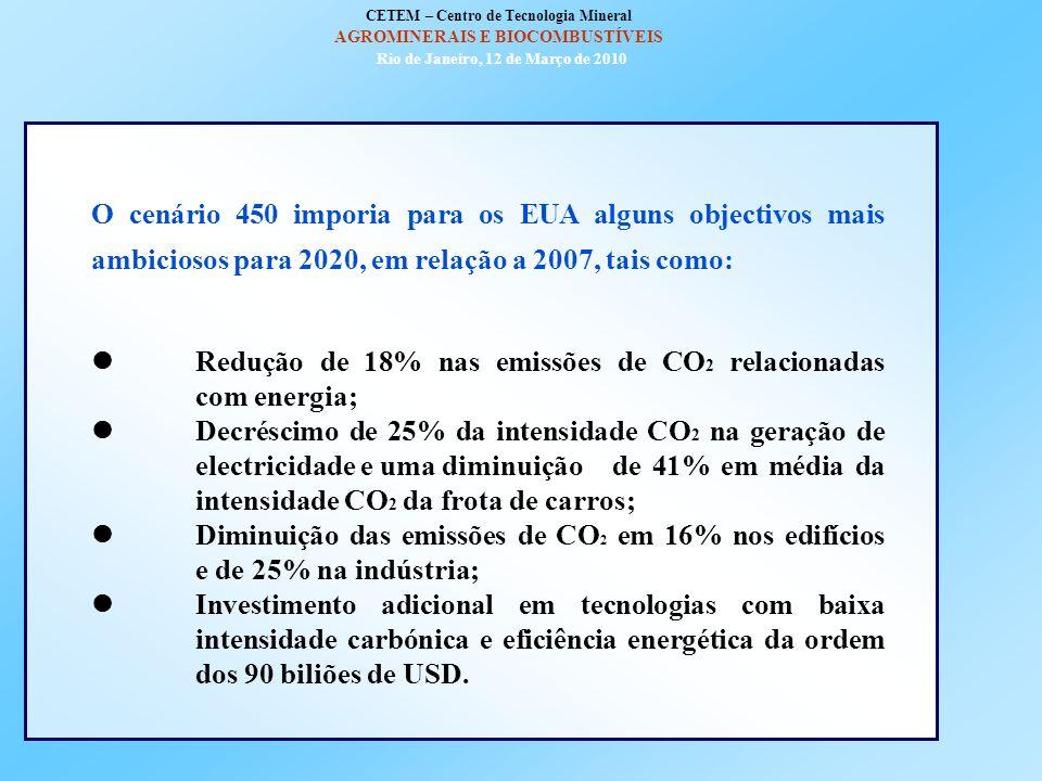 CETEM – Centro de Tecnologia Mineral AGROMINERAIS E BIOCOMBUSTÍVEIS Rio de Janeiro, 12 de Março de 2010