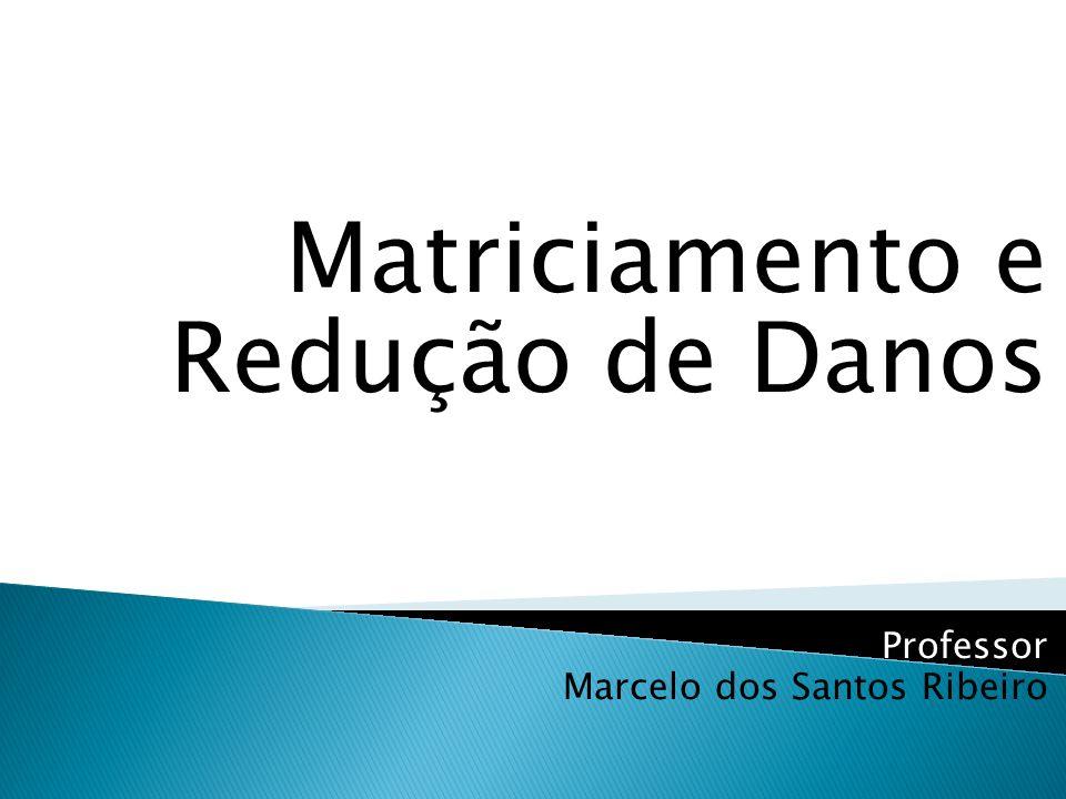 Matriciamento e Redução de Danos Professor Marcelo dos Santos Ribeiro