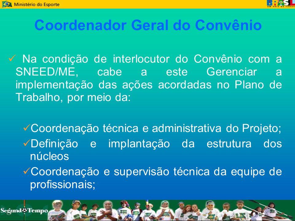 Coordenador Geral do Convênio Na condição de interlocutor do Convênio com a SNEED/ME, cabe a este Gerenciar a implementação das ações acordadas no Pla