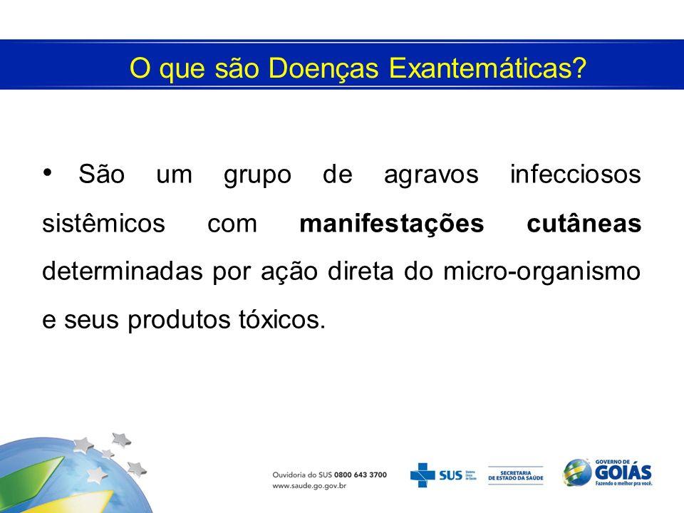 O que são Doenças Exantemáticas? São um grupo de agravos infecciosos sistêmicos com manifestações cutâneas determinadas por ação direta do micro-organ