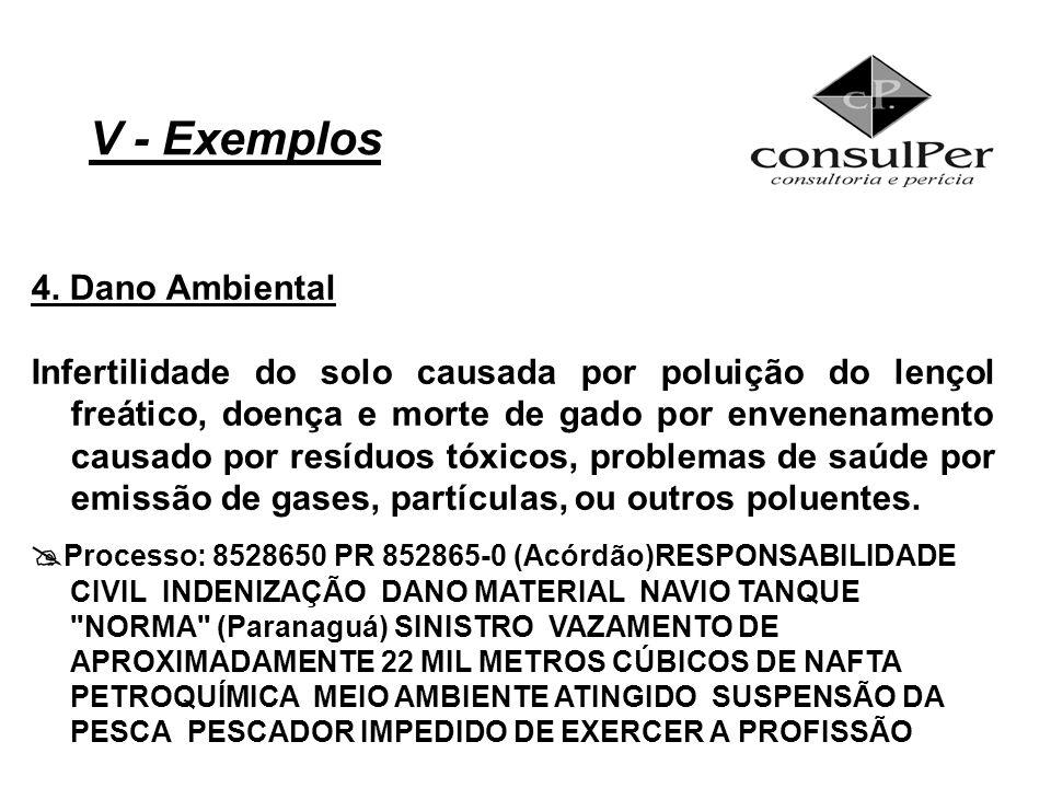 V - Exemplos 4. Dano Ambiental Infertilidade do solo causada por poluição do lençol freático, doença e morte de gado por envenenamento causado por res
