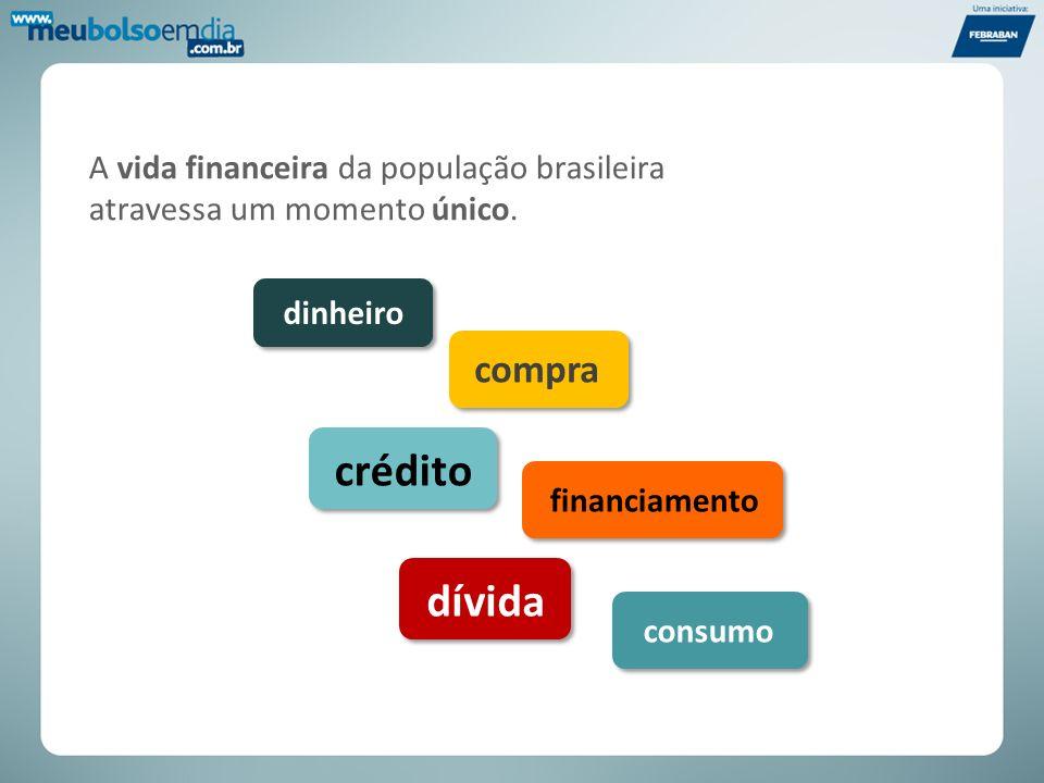 A vida financeira da população brasileira atravessa um momento único. dinheiro compra crédito financiamento dívida consumo