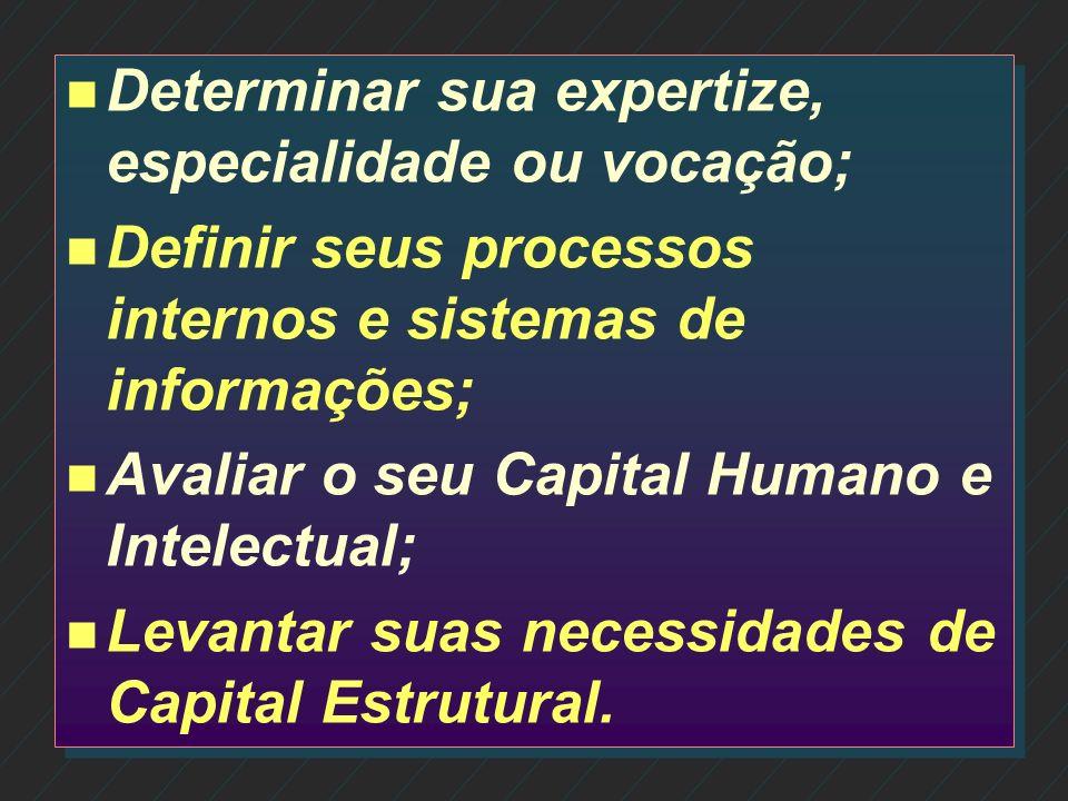 n n Visão sistêmica da empresa; n n Entender e desenvolver o negócio como um todo; n n Definição de ações estruturadas e focadas no futuro; n n Identi