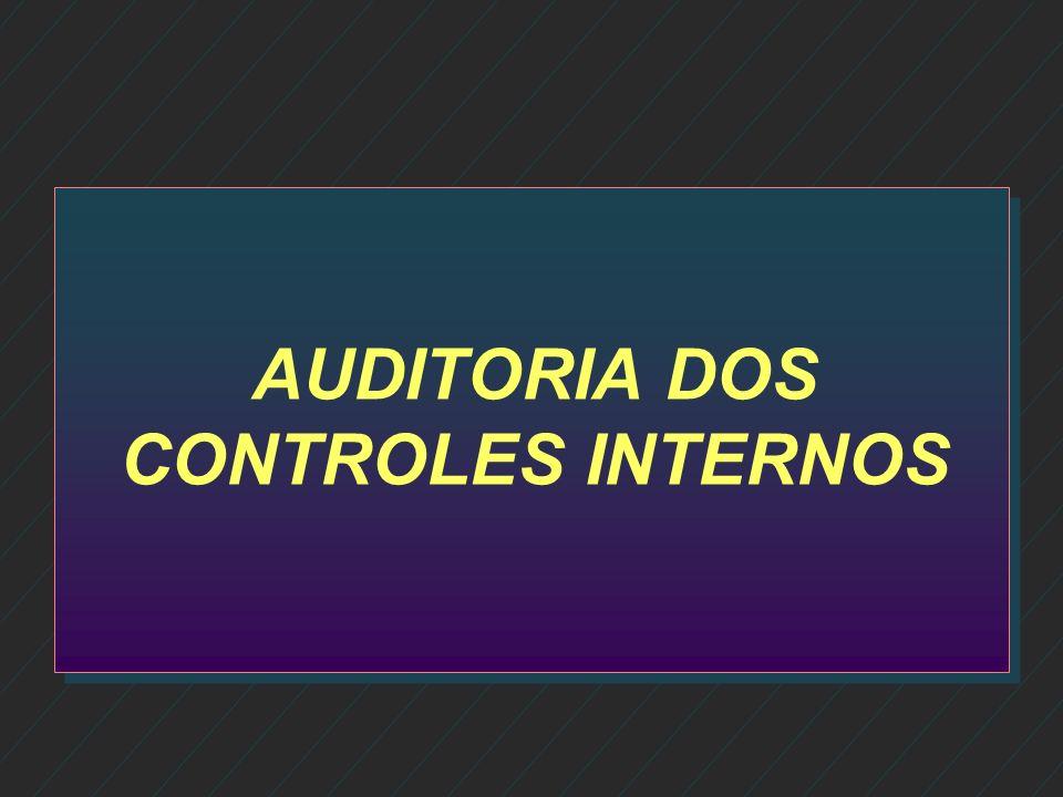 ÁREAS DE DESENVOLVIMENTO n DUAS GRANDES ÁREAS Auditoria de controles internos Auditoria de controles internos Auditoria de clientes Auditoria de clien
