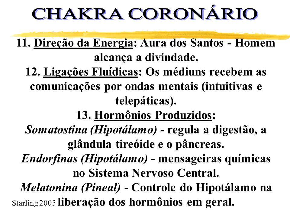 Starling 2005 11. Direção da Energia: Aura dos Santos - Homem alcança a divindade. 12. Ligações Fluídicas: Os médiuns recebem as comunicações por onda