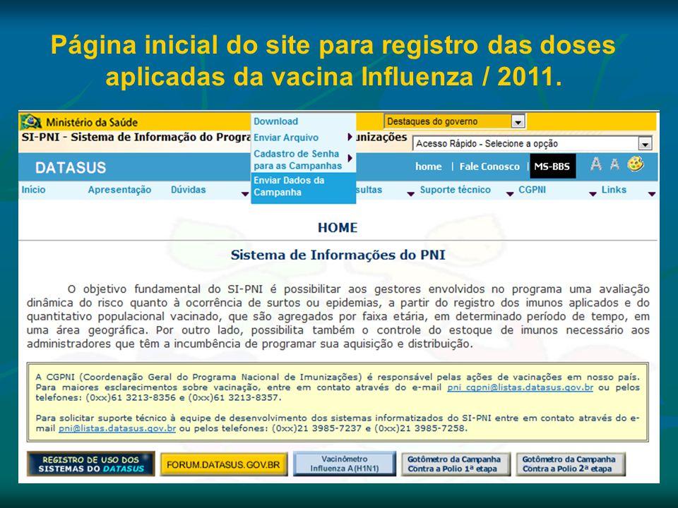 Página inicial do site para registro das doses aplicadas da vacina Influenza / 2011.
