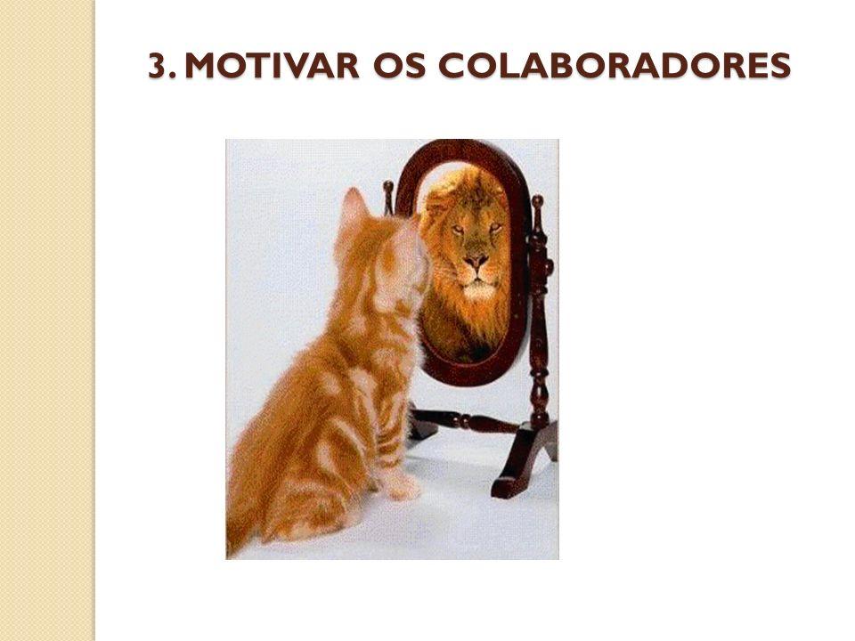 3. MOTIVAR OS COLABORADORES