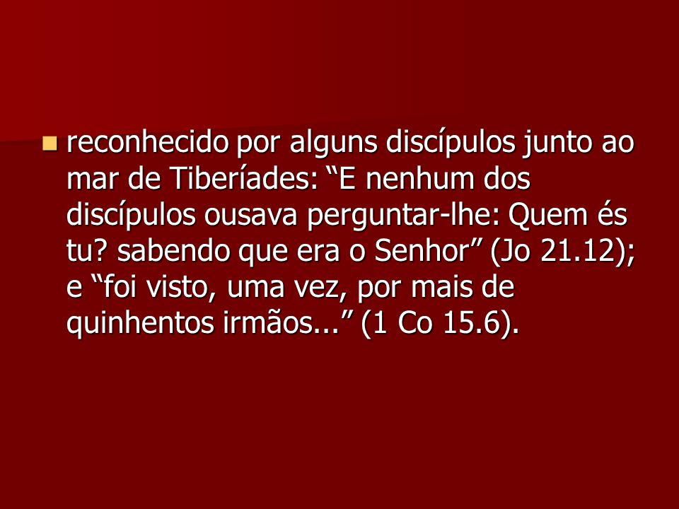 reconhecido por alguns discípulos junto ao mar de Tiberíades: E nenhum dos discípulos ousava perguntar-lhe: Quem és tu? sabendo que era o Senhor (Jo 2