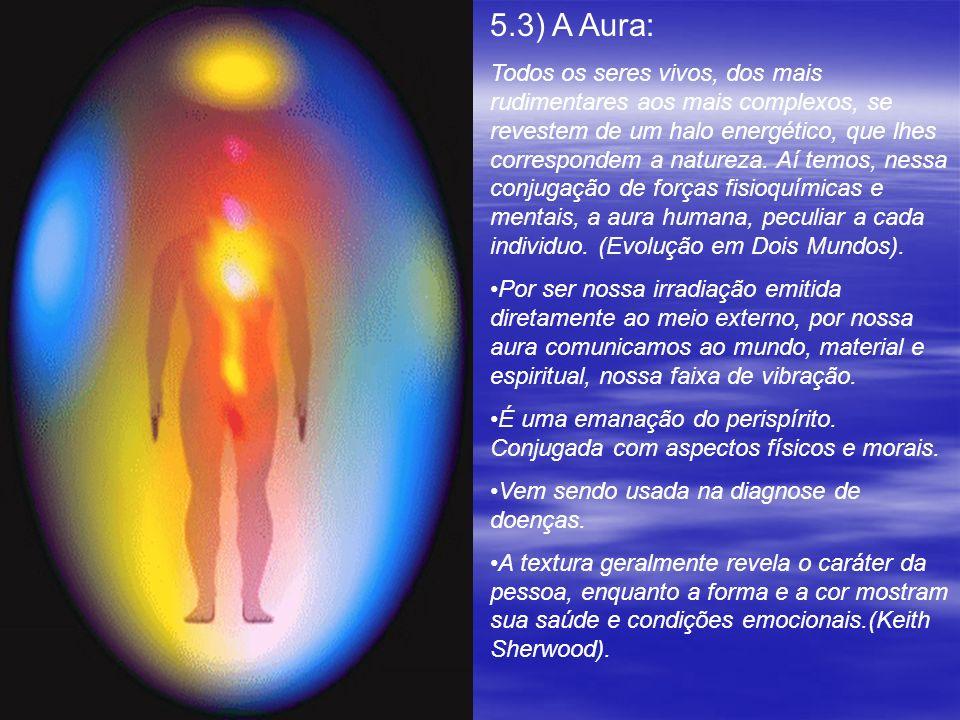 5.3) A Aura: Todos os seres vivos, dos mais rudimentares aos mais complexos, se revestem de um halo energético, que lhes correspondem a natureza. Aí t