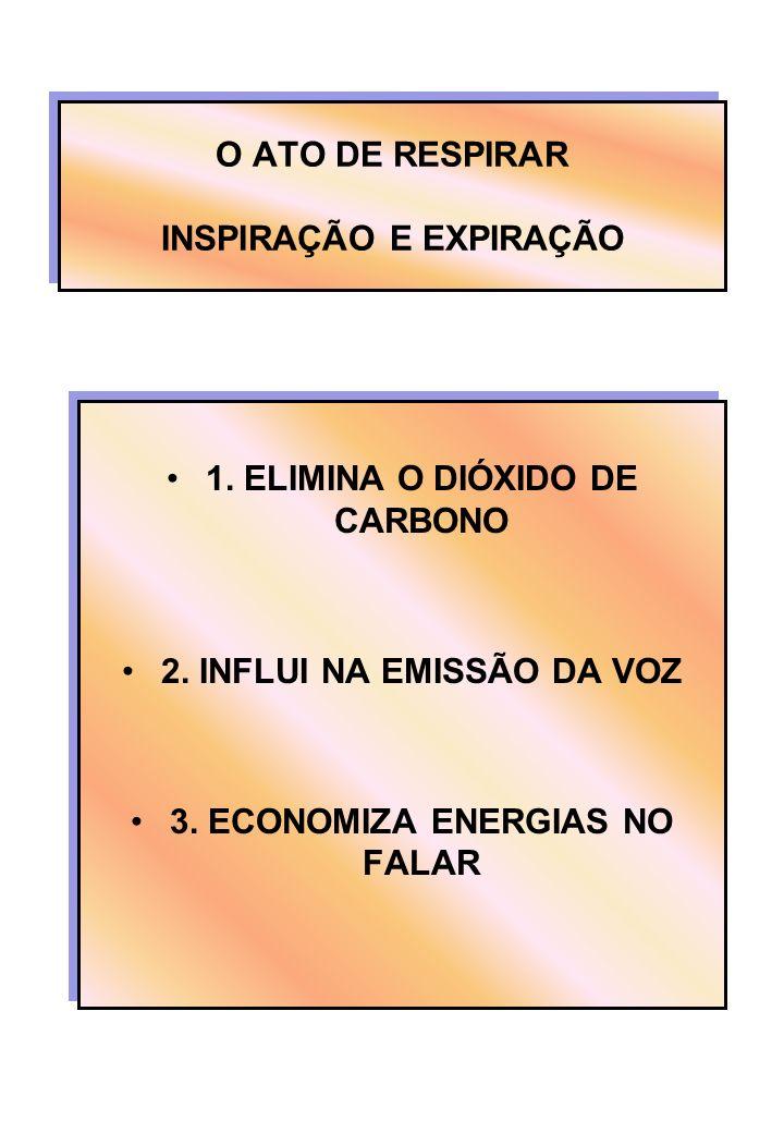 O ATO DE RESPIRAR INSPIRAÇÃO E EXPIRAÇÃO 1. ELIMINA O DIÓXIDO DE CARBONO 2. INFLUI NA EMISSÃO DA VOZ 3. ECONOMIZA ENERGIAS NO FALAR 1. ELIMINA O DIÓXI