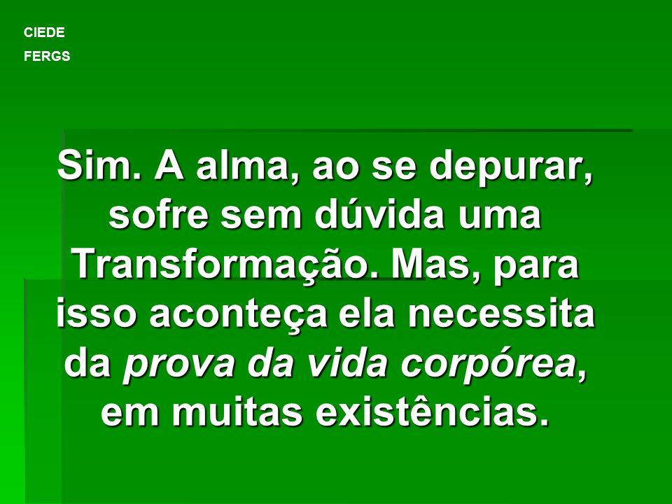 Sim. A alma, ao se depurar, sofre sem dúvida uma Transformação. Mas, para isso aconteça ela necessita da prova da vida corpórea, em muitas existências
