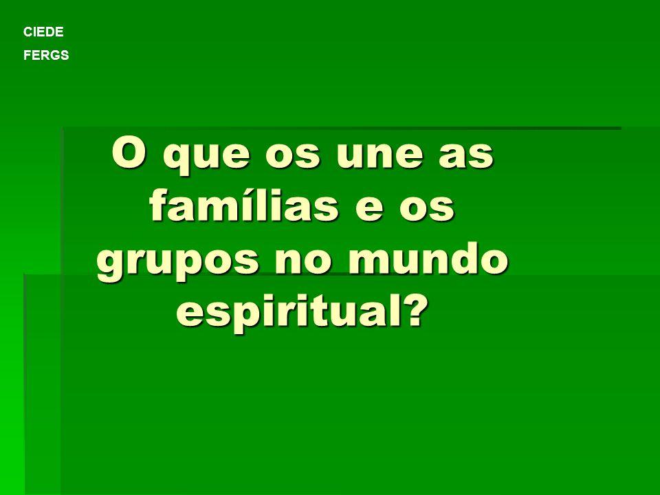 O que os une as famílias e os grupos no mundo espiritual? CIEDE FERGS