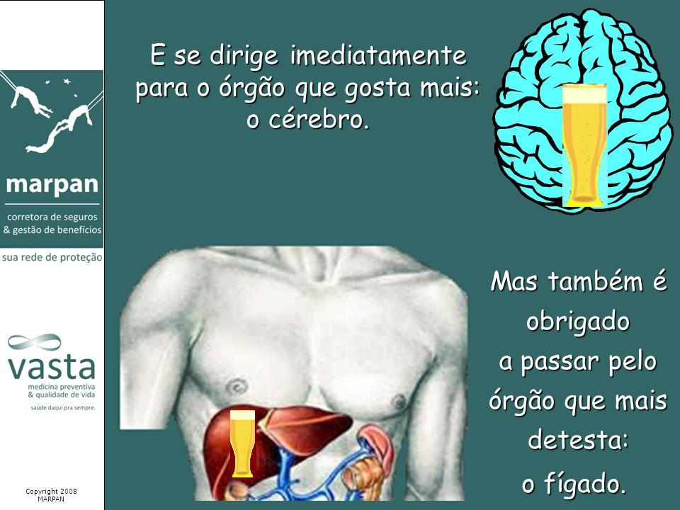 E se dirige imediatamente para o órgão que gosta mais: o cérebro. Mas também é obrigado a passar pelo órgão que mais detesta: Copyright 2008 MARPAN o