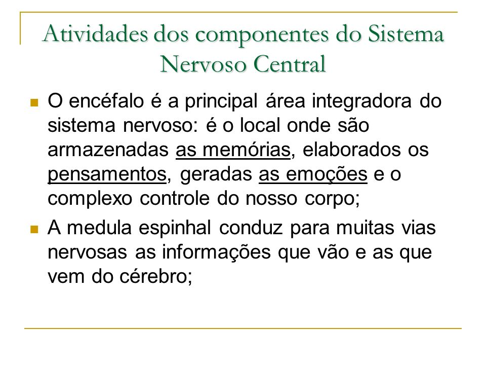 Atividades dos componentes do Sistema Nervoso Central O encéfalo é a principal área integradora do sistema nervoso: é o local onde são armazenadas as