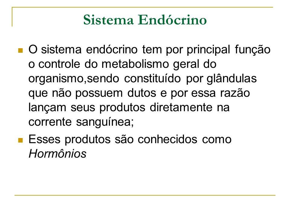 Sistema Endócrino O sistema endócrino tem por principal função o controle do metabolismo geral do organismo,sendo constituído por glândulas que não po